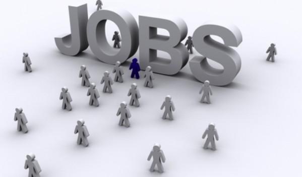 221 locuri de muncă, disponibile în județul Alba