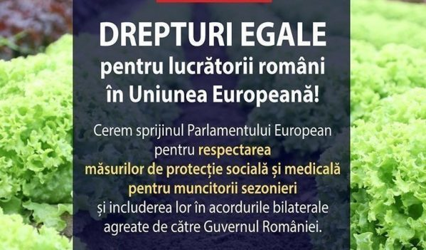 """Semnează petiția """"Drepturi egale pentru lucrătorii români în Uniunea Europeană""""!"""